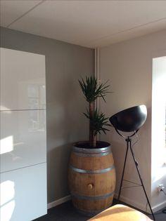 #yucca #wijnvat #flexa #kiezelgroen