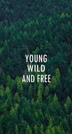 Young Wild And Free Forest Pattern iPhone 6 Plus HD Wallpaper
