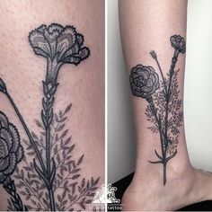 Carnation, gillyflower, black dotwork by tilldth tattoo: