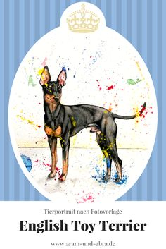 Zeichnung Hund - English Toy Terrier - Aquarell nach Foto - Aram und Abra