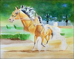 watersolublecoloredpencilhorse6-carrielewis