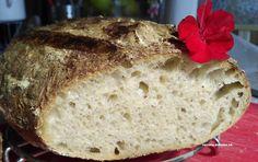 Lievito madre – založenie kvásku – moje malé veľké radosti Kefir, Toast, Bread, Food, Basket, Brot, Essen, Baking, Meals