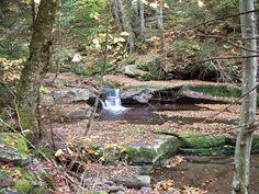 Diamond Notch Trail, Lanesville, NY, October 2013
