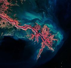 This Landsat image of 3 October 2011 shows the Mississippi River Delta, where the largest river in the United States empties into the Gulf of Mexico. In this false-colour image, land vegetation appears pink, while the sediment in the surrounding waters are bright blue and green.