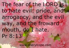What is the Fear of the Lord? http://www.cherylcope.com/what-is-the-fear-of-the-lord