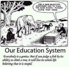 Two Beautiful Visuals on Traditional Education System