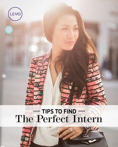 How to Hire the Perfect Intern | Levo | Hiring An Intern