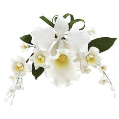 Cattleya Orchid Spray, White, 4 Count by Chef Alan Tetreault