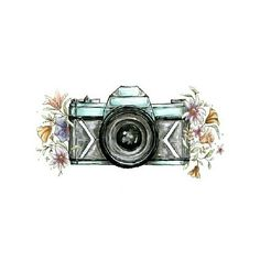 Cait Kimball Photography Logo Watermark By Shannon Sutton Via Behance