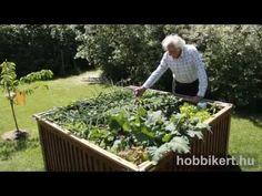 Apró kert magasággyal: az egész családot elláthatja | Hobbikert.hu Garden Park, Balcony Garden, Outdoor Life, Paths, Pergola, Gardening, Make It Yourself, Holiday, Image