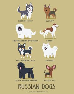 Russian Dogs--Adorable Drawings of Dog Breeds, Grouped By Their Place of Origin