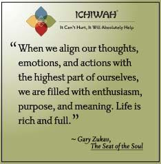 When we align our thoughts, emotions, and actions with the highest part of ourselves, we are filled with enthusiasm, purpose, and meaning. Life is rich and full. – Gary Zukav, The Seat of the Soul