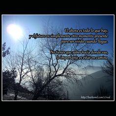 Vive el momento, el futuro aun tiene que llegar. #ocourel #galicia #monte #invierno #otoño #niebla #azul #cielo #sol #montañas #montaña #foto #fotografía #photo #fotógrafa #frases #quotes #motivación  http://barbomil.com/c/real&ad=pintcou