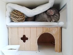 New cosy and safe cage for my chinchillas - IKEA Hackers Chinchilla Cage, Plywood Board, Ikea Hackers, China, Animals And Pets, Bunny, Rowan, Furniture, Home Decor