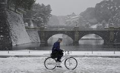 "fotojournalismus: ""A police officer patrols on a bicycle during heavy snowfall in the surrounding gardens of the Imperial Palace in Tokyo, Japan on February 8, 2014. (Franck Robichon/EPA) """