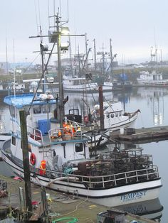 Commercial fishing boats  - Crescent City, CA
