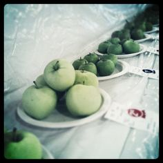 rows of pretty green apples at the Orange Co NY fair