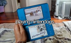 If I didn't sell my Nintendogs games, I would still play them today.