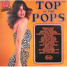 Top Of The Pops Vol. 73 - They used to sell these in our local Newsagents. The problem was all the songs were sung by session singers, never the original artists and let's be honest, they were pretty naff. Old Records, Vintage Records, Vinyl Records, Lp Cover, Vinyl Cover, Does Your Mother Know, Nostalgic Music, Boogie Wonderland, Boney M