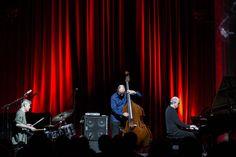 """The Necks sind eine Art Ambient-Jazz-Band, wenn es denn so etwas gibt, ein Geheimtipp seit 30 Jahren.""""Tonal, zugänglich und dennoch immer eine Herausforderung"""", schreibt das Avantgarde-Magazin """"The Wire"""" über die Auftritte des Trios. """"Sie sind einzigartig und spielen Musik, die niemand sonst spielt"""". Die """"New York Times"""" befindet trocken: """"Eine der besten Bands der Welt""""."""