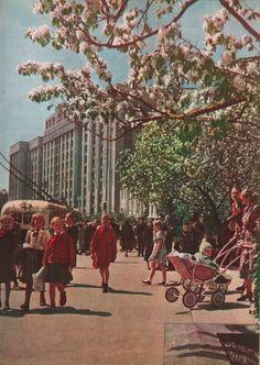 Москва. 60-е. Идиллия... pic.twitter.com/cnf5KE8Fyd
