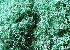 Custom and Unique {8 Ounces} of Crinkle Cut Shredded Gift Basket Filler Paper Made From Tissue w/ Basic Fun Creative Bright Versatile Spring Seasonal Time Grass Inspired Design (Green) *** Read more reviews of the product by visiting the link on the image.
