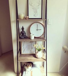 Love these Kmart Industrial Ladder Shelves! And its also decked out with more Kmart goodies such as: the Beaker Candle, Copper Clock and Pastel Pink Vase. Oh and I spy a little cutie on the bottom shelf (not available from Kmart haha) who has found himsel | Flickr - Photo Sharing!