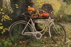 Day 1 Fall Scenery- I love how this represents different aspects of fall being able to ride bike without the heat, picking out pumpkins and of course the changing of the leaves into their fall colors.