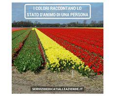 I colori raccontano lo stato d'animo di una persona. Sei d'accordo ? #statodanimo #labellezzadeicolori