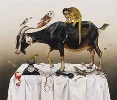 "Kate Bergin ""The Self Preservation Society"""