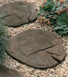 Timberstone Log Garden Stepping Stones (Made of Concrete!) Timberstone Log Garden Stepping Stones (M Diy Garden, Garden Crafts, Dream Garden, Garden Paths, Garden Projects, Garden Art, Garden Landscaping, Garden Design, Landscaping Design