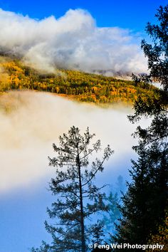 Foggy autumn mountains in North Xinjiang #travel #china