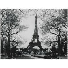 Eiffel Tower Park Canvas Wall Art ($20) ❤ liked on Polyvore featuring home, home decor, wall art, backgrounds, pictures, paris, photos, black and white, filler and tree picture
