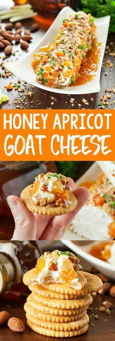 Honey Apricot Goat Cheese Spread Honey, Apricot, and Almond Goat Cheese Spread: This easy, cheesy appetizer will add a burst of color and a whole lot of deliciousness to your holiday table! Full of festive flavor and ready in minutes! Goat Cheese Spread Recipe, Goat Cheese Recipes, Thanksgiving Appetizers, Thanksgiving Recipes, Fall Recipes, Appetizer Recipes, Snack Recipes, Cooking Recipes, Great Recipes