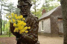 Obras do filósofo influenciaram o movimento ambientalista   por José Eustáquio Diniz Alves Estátua de Thoreau às margens do lago WaldenHenry David Thoreau (1817-1862) foi um autor norte-a…
