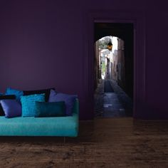 dark purple & turquoise
