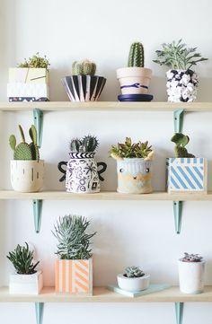 Een kijkje in de cute urban jungle kast van Londense designer Lizzie van Islington Design District. // via What Olivia Did Lovely ceramic designer pots for your succelents.