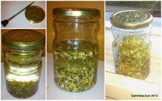 Keimglas DIY - Upcycling Sprossen und Keime selber ziehen DIY: gesund, lecker, vegetarisch
