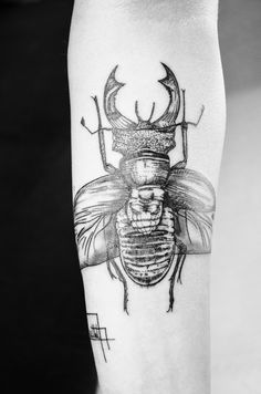 insect tattoo   Tumblr