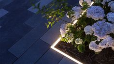 Nulty - Baylis Old School, London - Lighting Design Planting Gardens Residential Development