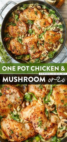 99 reviews · Serves 4 · This chicken recipe is what you need for a quick and easy dinner! Combined with creamy orzo, mushrooms, and spinach, this one-pot main dish is too good for anyone to pass up. Save this and try it! Best Chicken Recipes, Easy Pasta Recipes, Easy Dinner Recipes, Easy Meals, Cooking Recipes, Dinner Ideas, One Pot Recipes, Yummy Recipes, Simple Recipes
