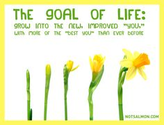 """The Goal of Life: grow into the new, improved """"you,"""" with more of the """"best you"""" than ever before."""