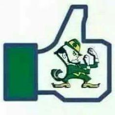 Fighting Irish FB Like Lou Holtz, Go Irish, Irish Catholic, Win My Heart, Notre Dame Football, Fighting Irish, Leprechaun, Rocks, Craft