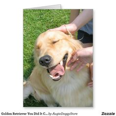 165 best golden retriever greeting cards postcards images on golden retriever you did it congrats encouragement card m4hsunfo