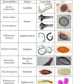 opisthorchis viverrini prevención de diabetes