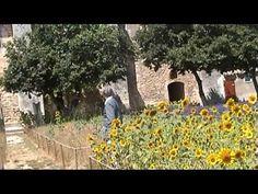 Van Gogh - Saint Paul-de-Mausole Asylum, Saint Remy de Provence, France - YouTube
