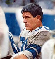 Dan Reeves - Dallas Cowboys - RB. Favorite, even though I am a die hard Packer fan.