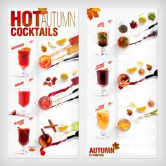 Menu-infographics (Autumn cocktails) by Ilya Levit, via Behance
