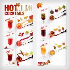 Menu-infographics (Autumn cocktails) by Ilya Levit, via Behance