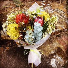 16 Likes, 6 Comments - Sydney Florist: Mel Githens ( on Inst. 16 Likes, 6 Comm